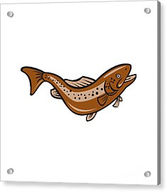 Brown Spotted Trout Jumping Cartoon Acrylic Print