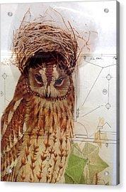 Brown Sugar Acrylic Print by Susan McCarrell