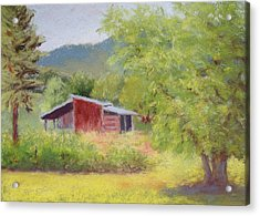 Acrylic Print featuring the painting Brown's Shed by Nancy Jolley