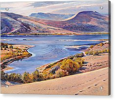 Bruneau Sand Dunes Acrylic Print by Steve Spencer
