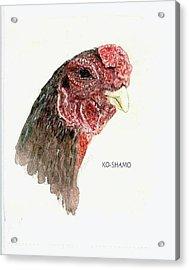Bruno The Ko Shamo Rooster Acrylic Print