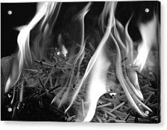 Brushfire 3 Acrylic Print by Sumit Mehndiratta