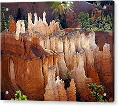 Bryce 2 Acrylic Print by Marty Koch