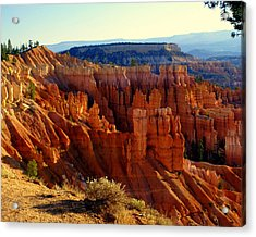 Bryce 3 Acrylic Print by Marty Koch