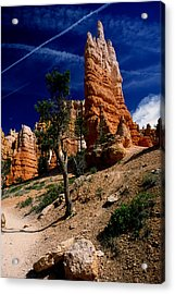 Bryce Canyon 10 Acrylic Print by Art Ferrier