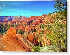 Acrylic Print featuring the photograph Bryce Canyon Artistry by John M Bailey