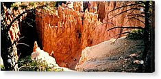 Acrylic Print featuring the photograph Bryce Canyon by Fred Wilson