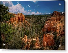 Bryce Canyon From The Top Acrylic Print