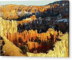 Bryce Canyon Hoodoos Evening Acrylic Print