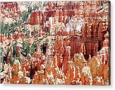 Bryce Canyon Hoodoos Acrylic Print by Nancy Landry