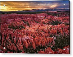 Bryce Canyon In The Glow Of Sunset Acrylic Print