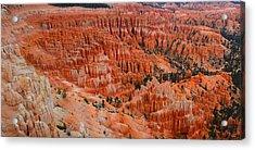 Bryce Canyon Megapixels Acrylic Print by Raymond Salani III