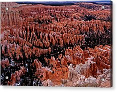 Bryce Canyon N. P. Acrylic Print by Larry Gohl