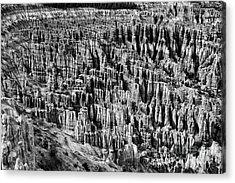 Bryce Canyon National Park Lll Acrylic Print by Hideaki Sakurai
