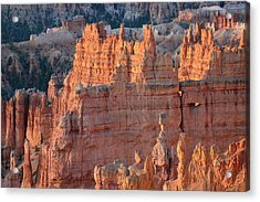 Acrylic Print featuring the photograph Bryce Canyon Sunrise 2016a by Bruce Gourley