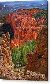 Bryce Canyon Vista Acrylic Print by Bob Coates