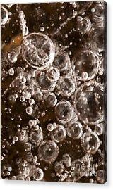 Bubbles Acrylic Print by Anne Gilbert