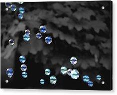 Bubbles Acrylic Print by Elizabeth Reynders