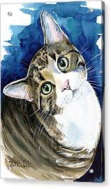 Bubbles - Tabby Cat Painting Acrylic Print