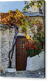 Bubion And The Vine Acrylic Print by Juan Carlos Ballesteros