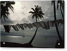 Buca Bay, Laundry And Palm Trees Acrylic Print by James L. Stanfield