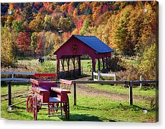Acrylic Print featuring the photograph Buck Board Ready For Fall Colors by Jeff Folger