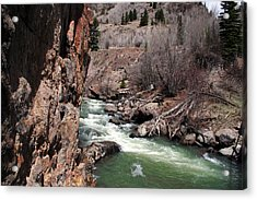 Buck In The Rapids Acrylic Print