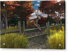 Buck Jumping Acrylic Print by Mary Almond