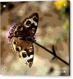 Buckeye Butterfly - Abstract Browns  Acrylic Print by Scott D Van Osdol