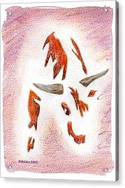 Bucking Bull Acrylic Print by Mark Schutter