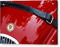 Acrylic Print featuring the photograph Buckle Up by John Schneider