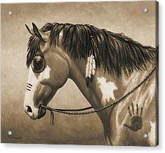 Buckskin War Horse In Sepia Acrylic Print by Crista Forest