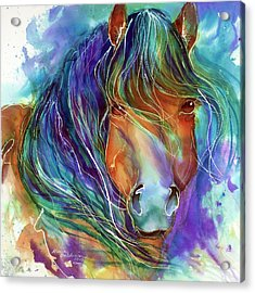 Bucky The Mustang In Watercolor Acrylic Print
