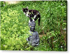 Acrylic Print featuring the photograph Buddha And Friend by Cynthia Lassiter