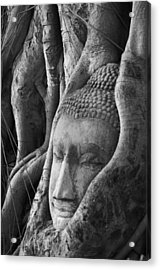 Buddha Head Acrylic Print by Jessica Rose