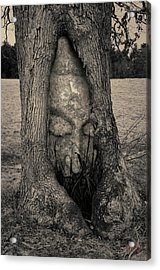 Buddha II Acrylic Print by Dave Gordon