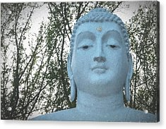 Buddha Nature Acrylic Print by Terry DeLuco