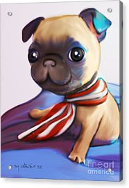 Buddy The Pug Acrylic Print