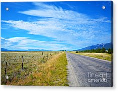 Acrylic Print featuring the photograph Buena Vista by Kate Avery