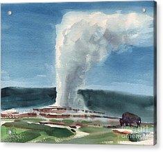 Buffalo And Geyser Acrylic Print by Donald Maier