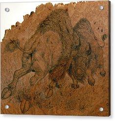 Buffalo Butt Acrylic Print by Jerrywayne Anderson
