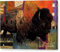 Buffalo Collection Acrylic Print