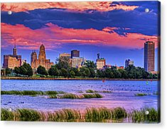 Acrylic Print featuring the photograph Buffalo In Pastels by Don Nieman