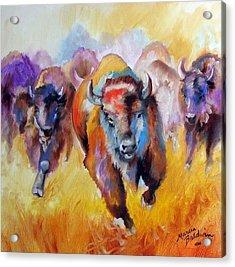 Buffalo Run 16 Acrylic Print