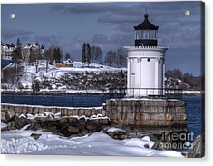 Bug Light In Winter Acrylic Print by David Bishop