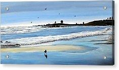 Bull Beach 2 Acrylic Print
