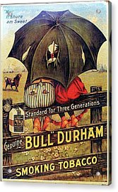 Bull Durham Smoking Tobacco Acrylic Print