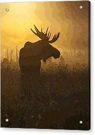 Bull Moose In Fog- Abstract Acrylic Print by Tim Grams