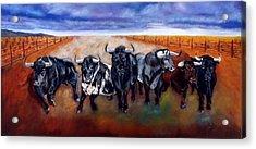 Bull Stampede Acrylic Print by Manuel Sanchez
