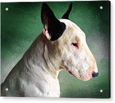 Bull Terrier On Green Acrylic Print